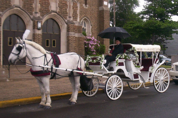 Weddings Imagine A Stunning Horse Drawn Carriage Pulling Up In Front Of Your Home To Transport You The Wedding Youve Always Dreamed